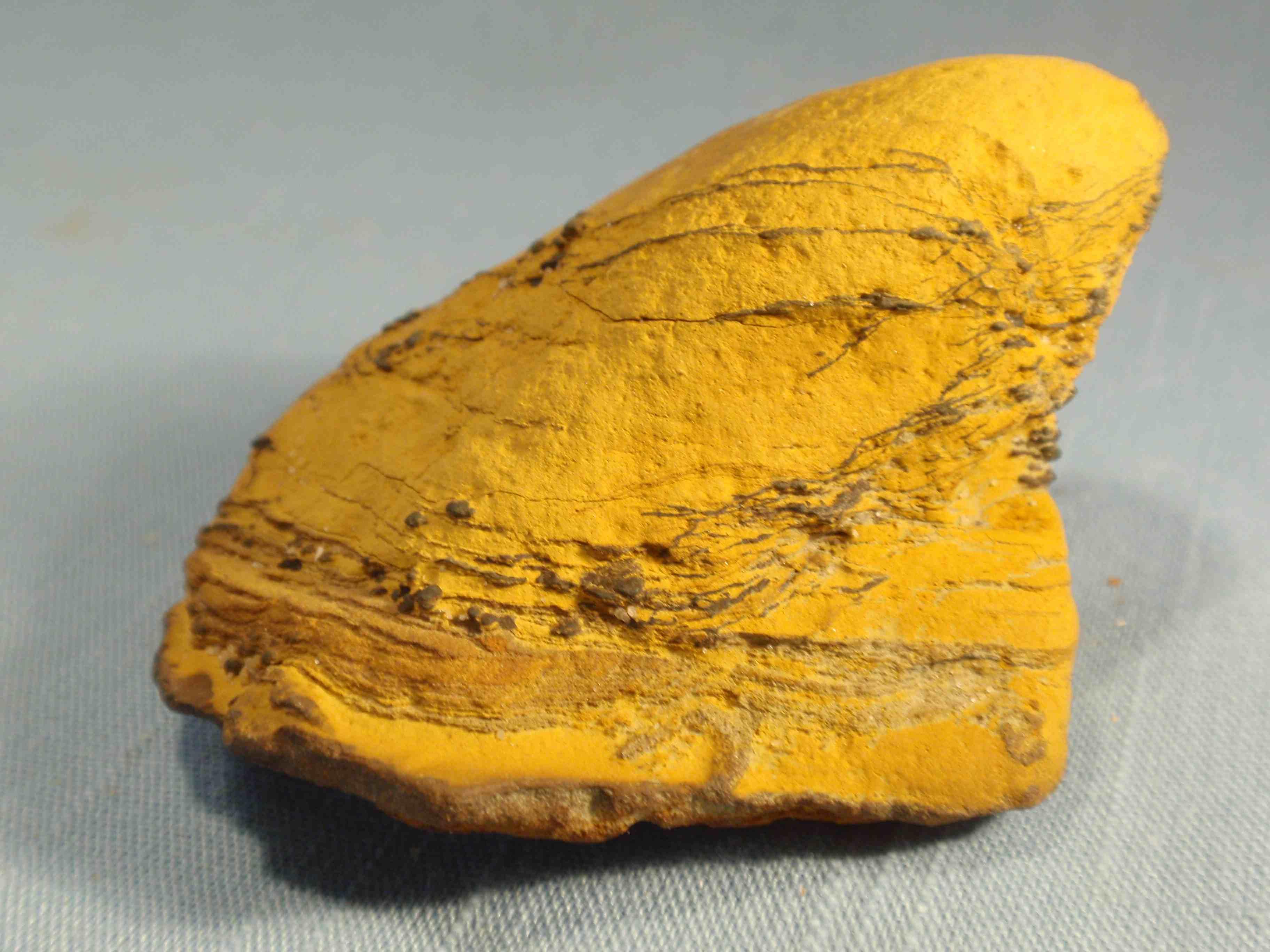 Chesapeake Biominerals Irocks Blog