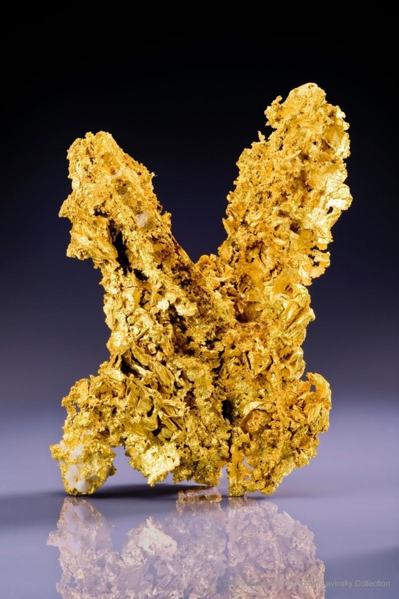 13-gold-china_3952c-2