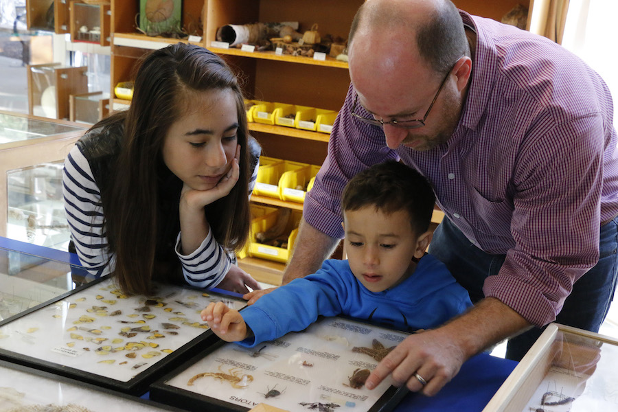 Buying and trading fine minerals and fossils at the Nature Exchange helps kids learn science and nature.