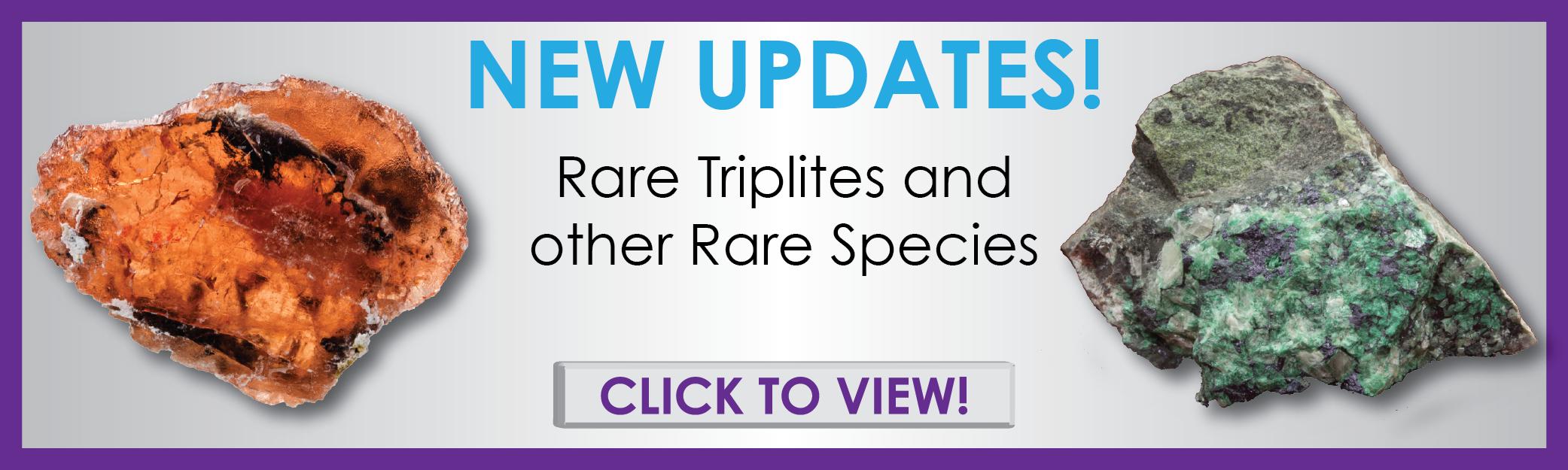 TRIP, RARE15C Updates