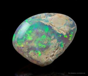 These very rare opal-replaced fossil shells were formed 135 million years ago and are unique to Australia. The supply at this famous locality, where the town of Coober Pedy is actually dug into the formation, has been exhausted as mining here is no longer profitable or commercially successful on any scale.