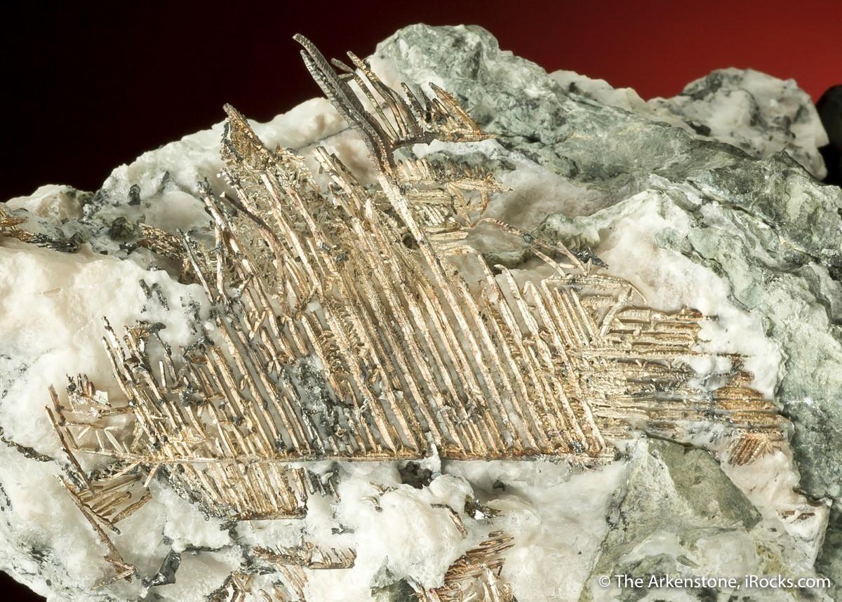 silver-newnevadamine-batopilas-mexico-11cm-jb1437-19-fine-mineral-specimens-wm