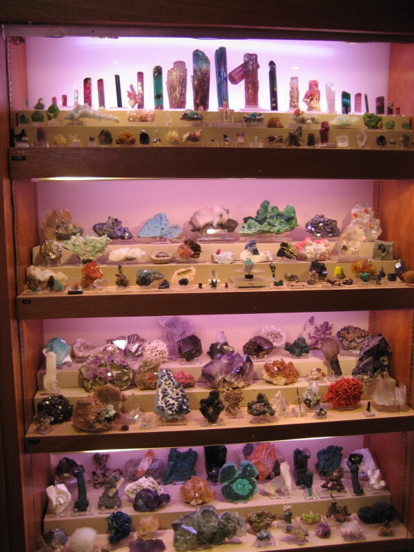 A wide assortment of specimens in the Jack Halpern Collection