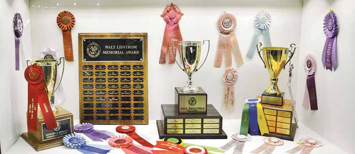 Desautels, Lidstrom, Bideaux, and Romero Trophies along with various ribbon awards for TGMS