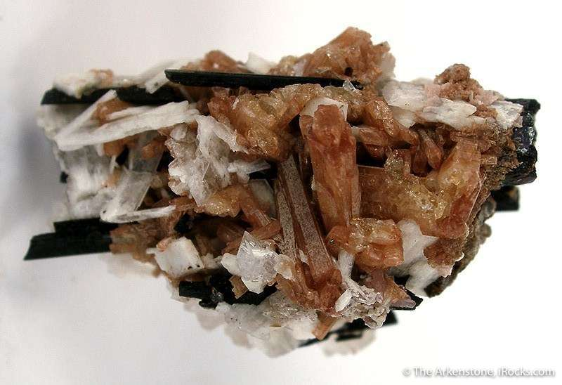 This specimen contains far away largest reported crystals species