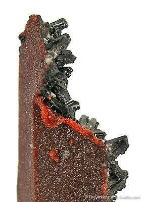 We specimens collection thousands pieces strange cast pseudomorphs