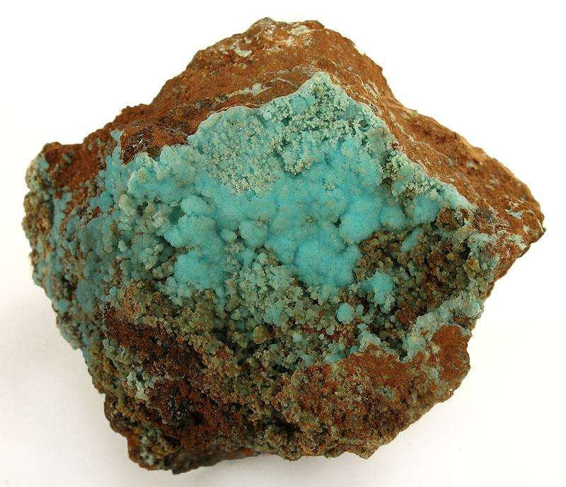 A beautiful specimen rich display face intensely turquoise colored