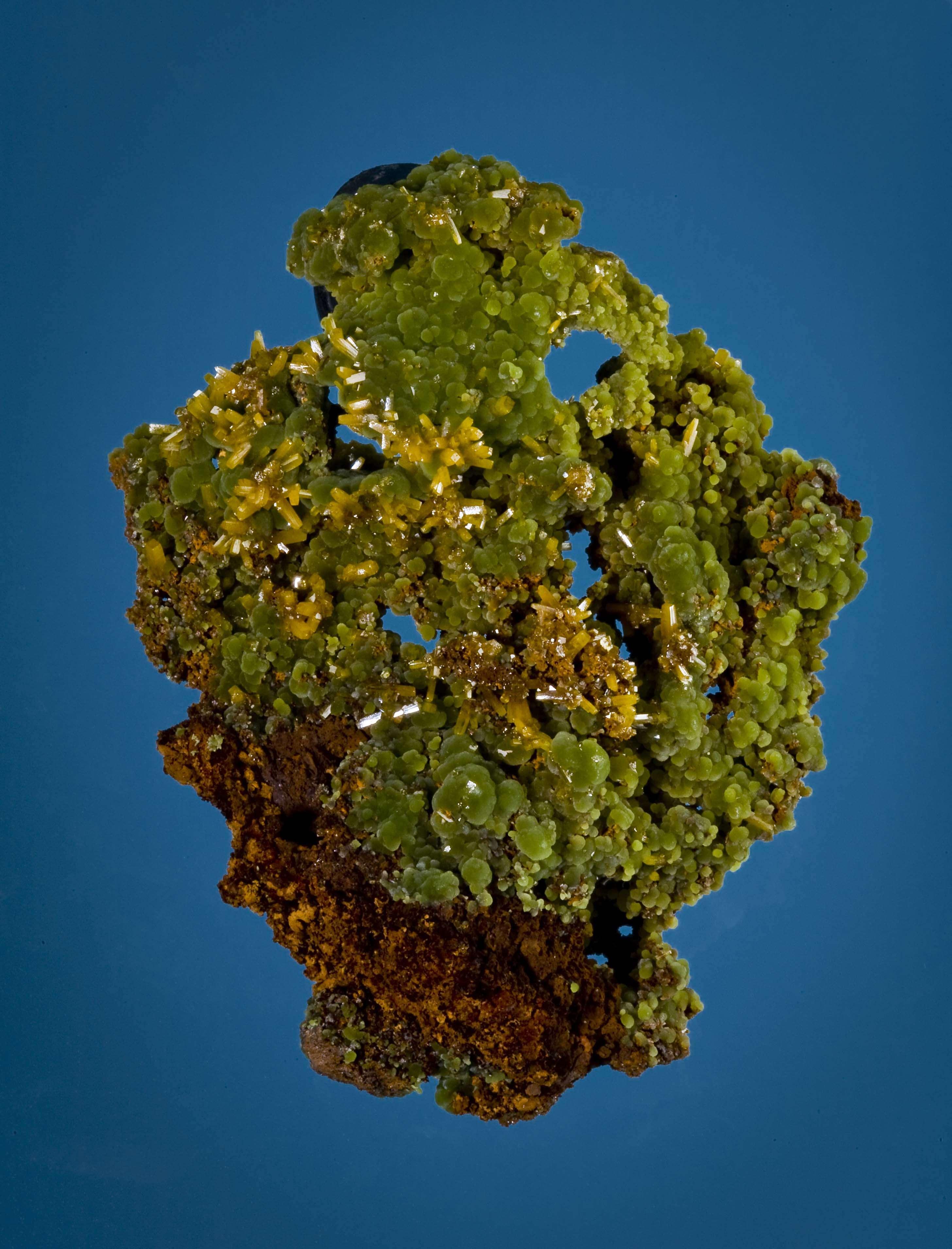 An elegant lightweight limonite matrix host spheres beautifully