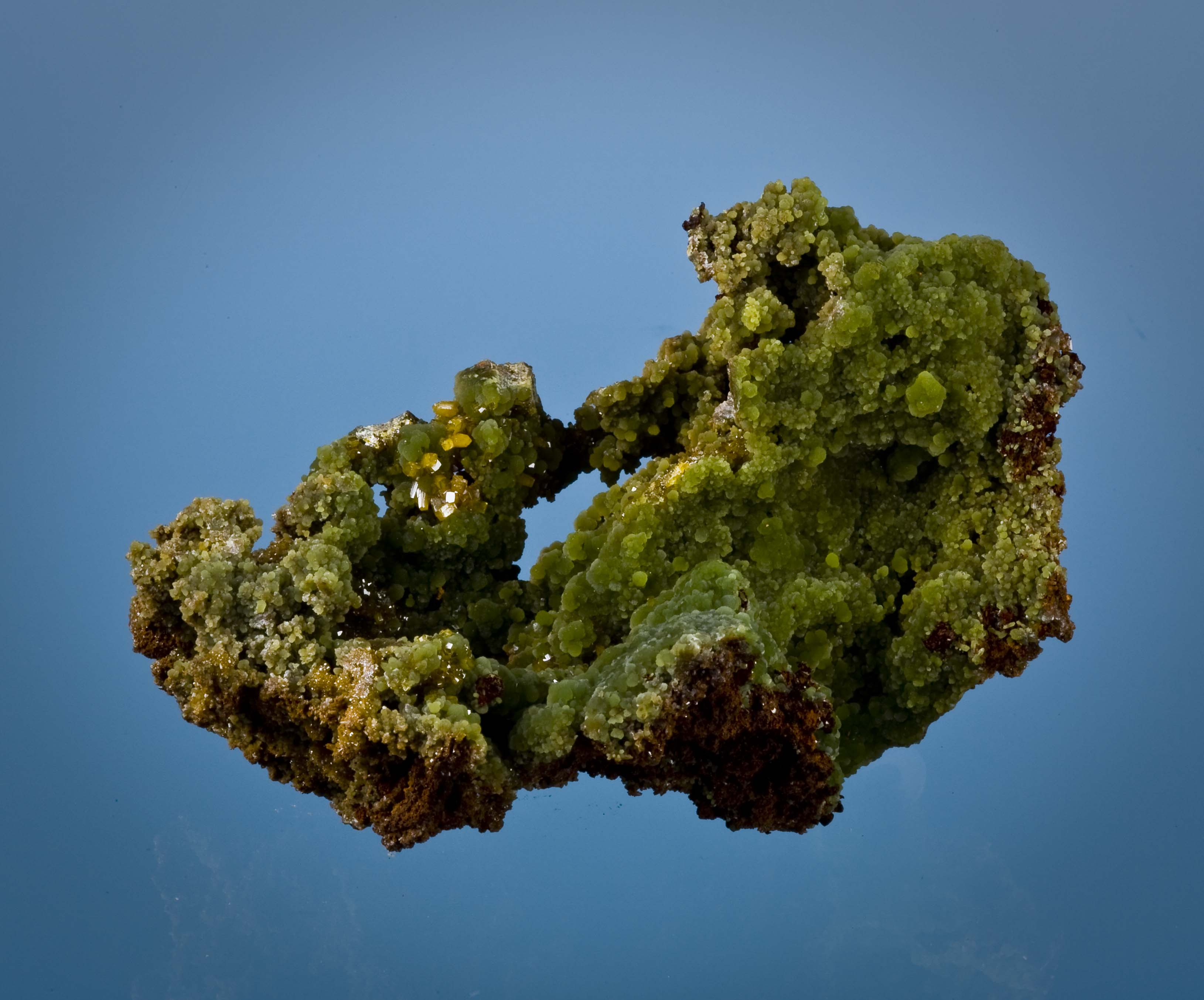 This specimen highlighted vugs hosting crusts lustrous rich green