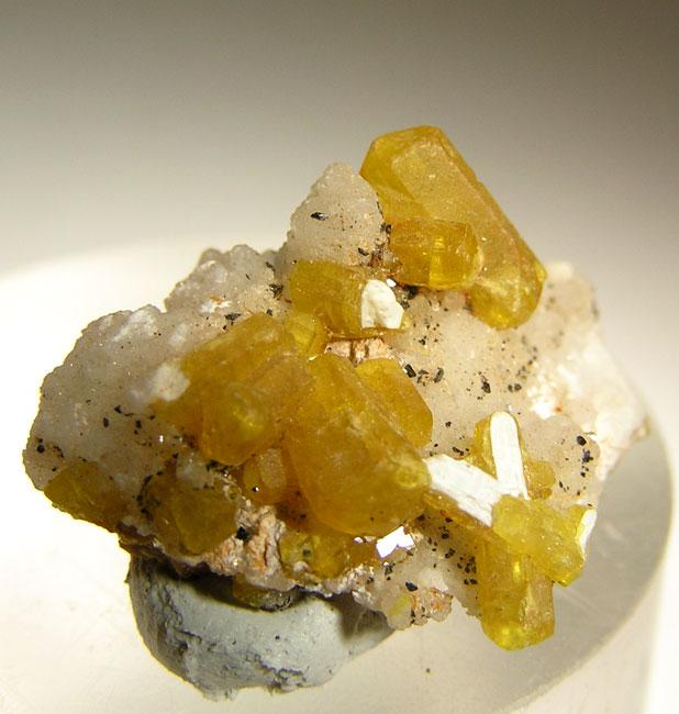 Lustrous bright yellow crystals 0 8 cm matrix known best ettringites