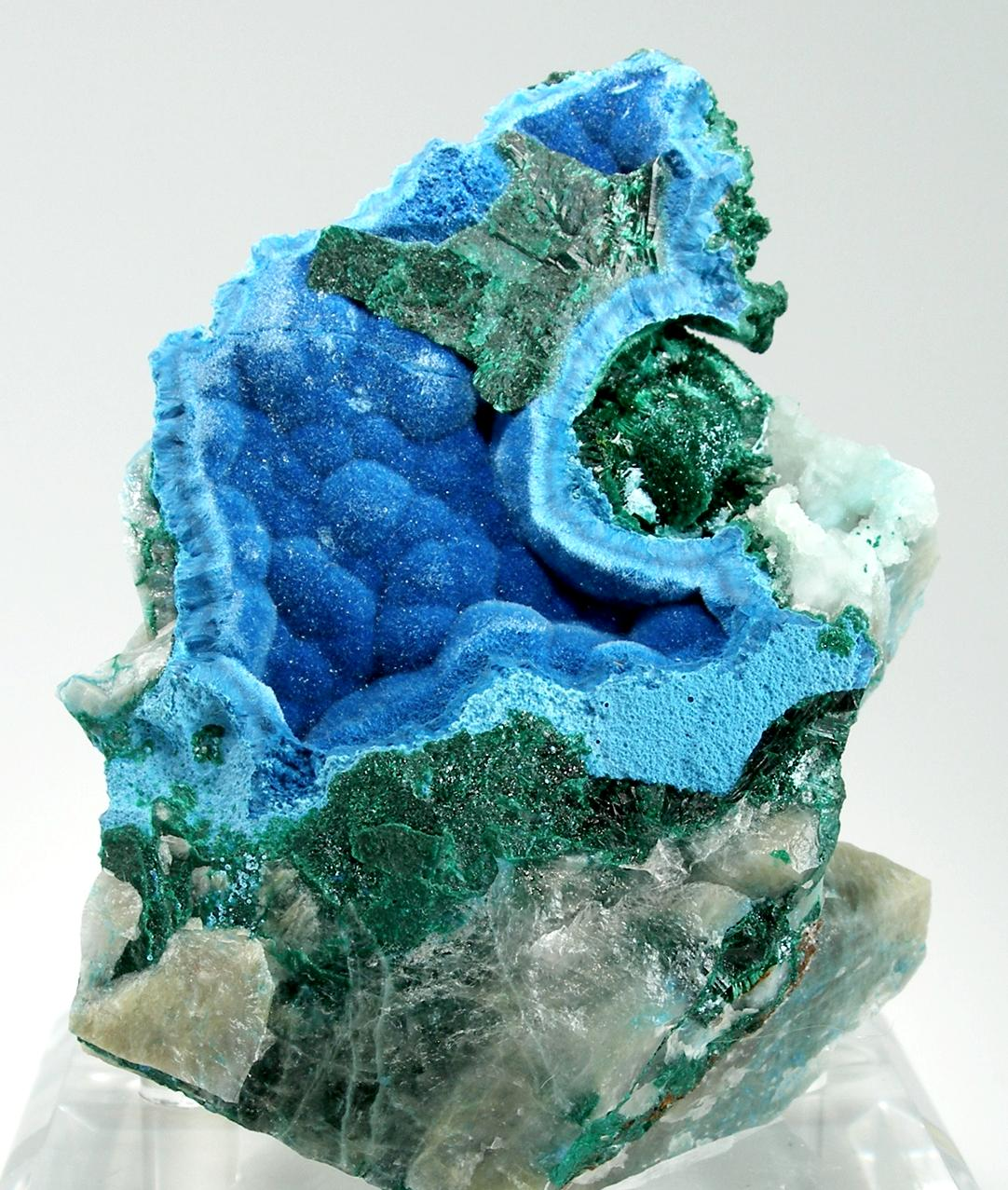 Here unusual pocket piece stunning specimen velvety shattuckite vivid