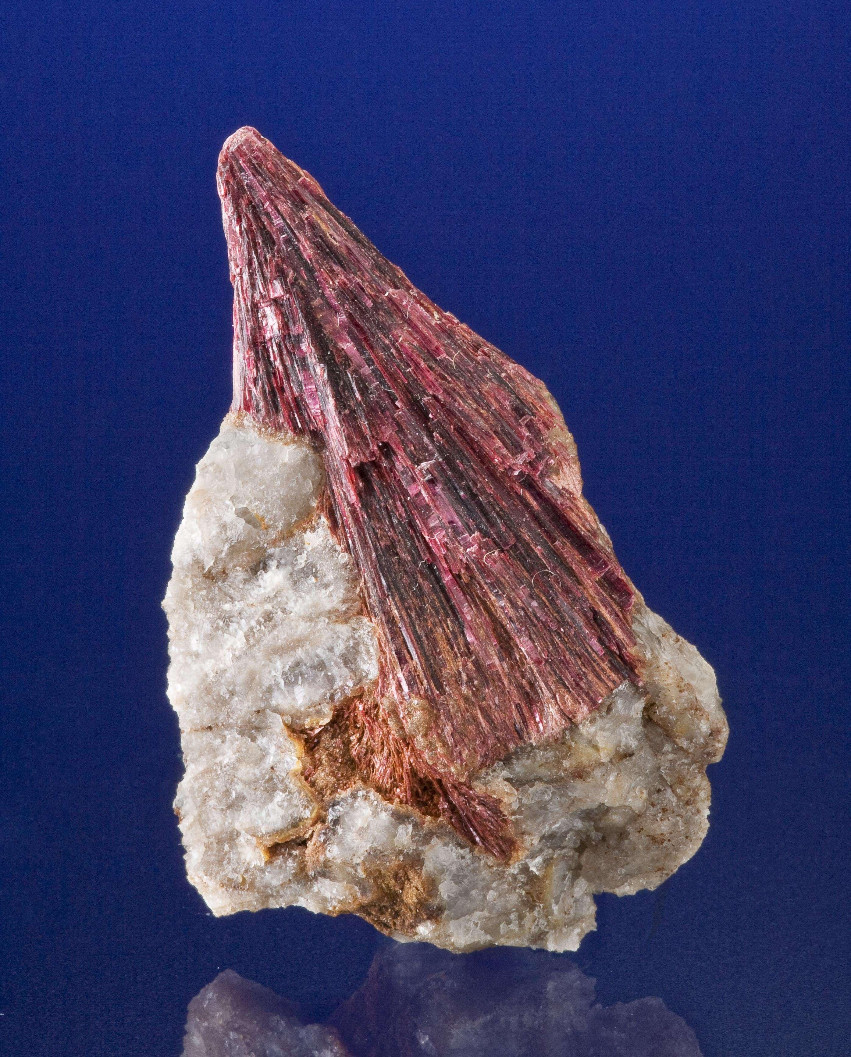 The 4 cm long crystals metallic erythrite rising quartz shard make