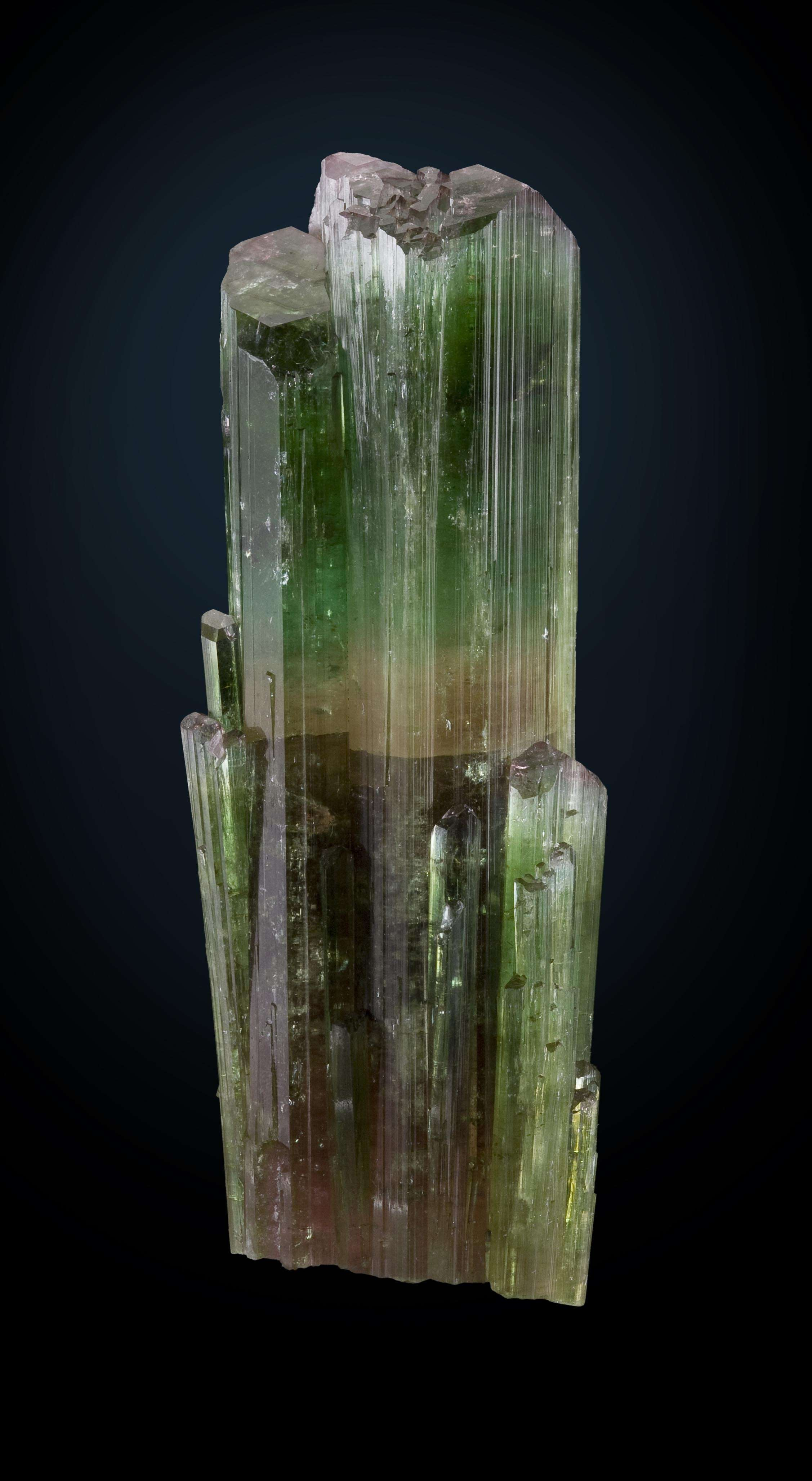 This specimen soaring cluster intergrown tourmalines dramatic color