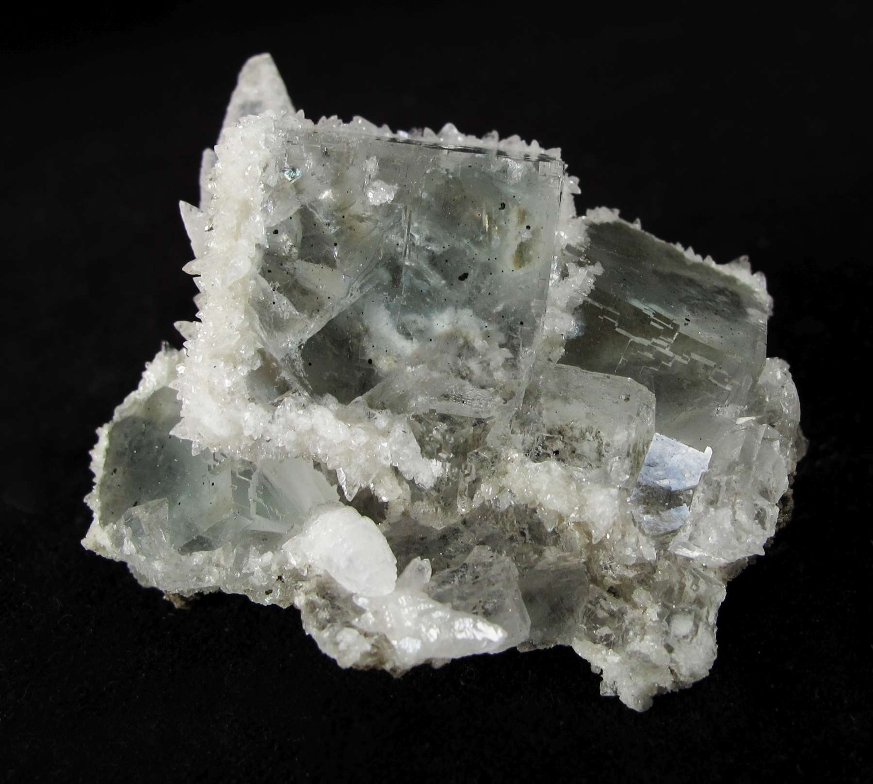 Glassy gemmy cubes pastel green fluorite 2 cm wreathed druse sparkling