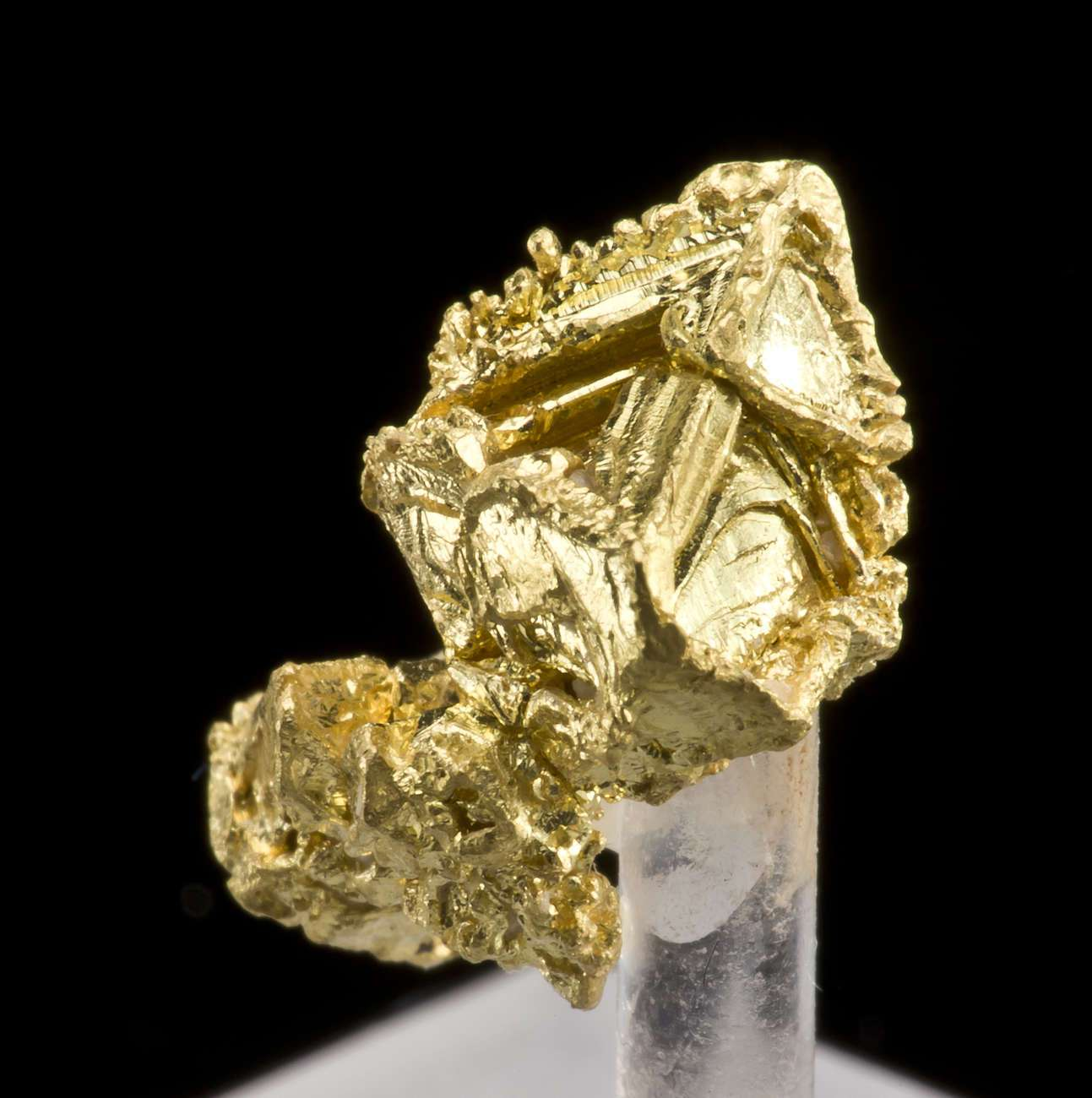This robust 3 dimensional sharp gold octohedron showing complex hopper