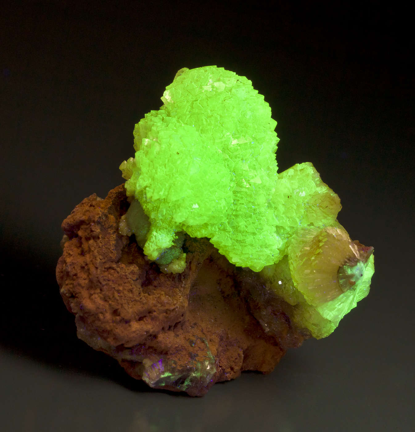 I owned adamite early 1990s happy turn instantly remembered