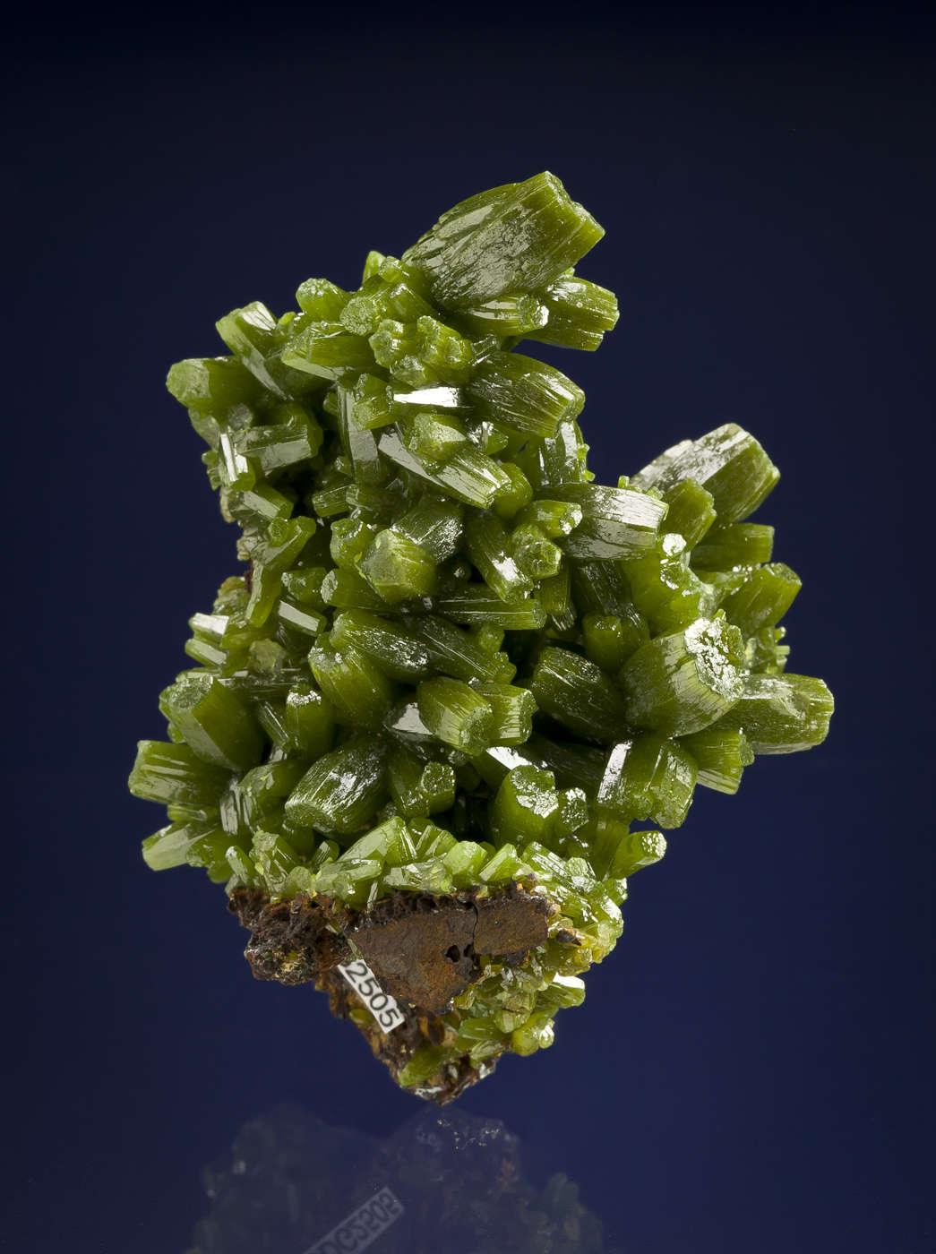 Pyromorphite - TUC12-582 - Les Farges Mine - France Mineral Specimen