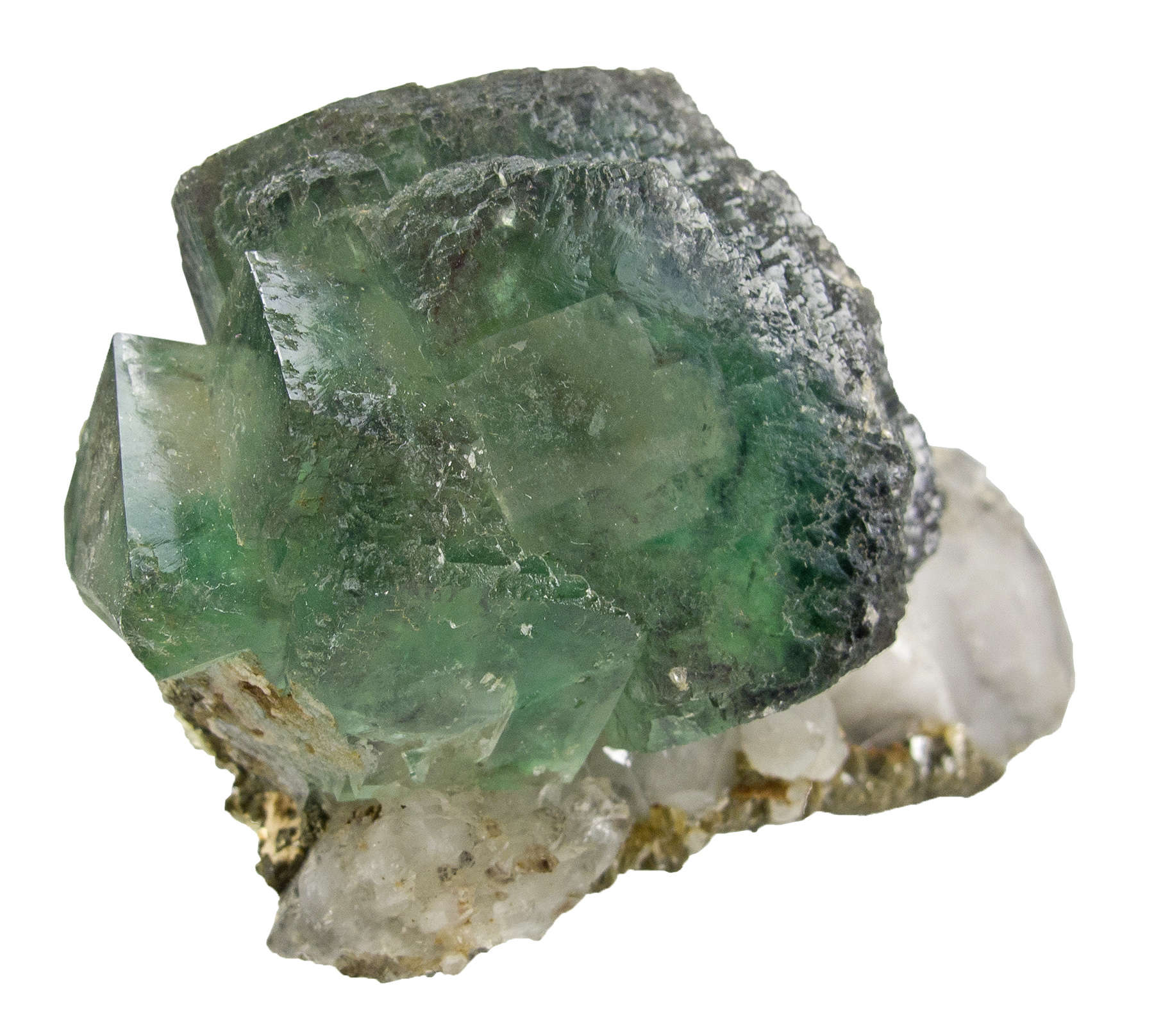A deep green fluorite crystal cluster perched thick crust terminated