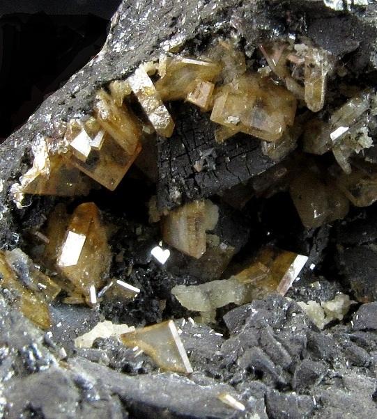 Dozens dozens sharp lustrous Stolzite crystals populate Quartz matrix