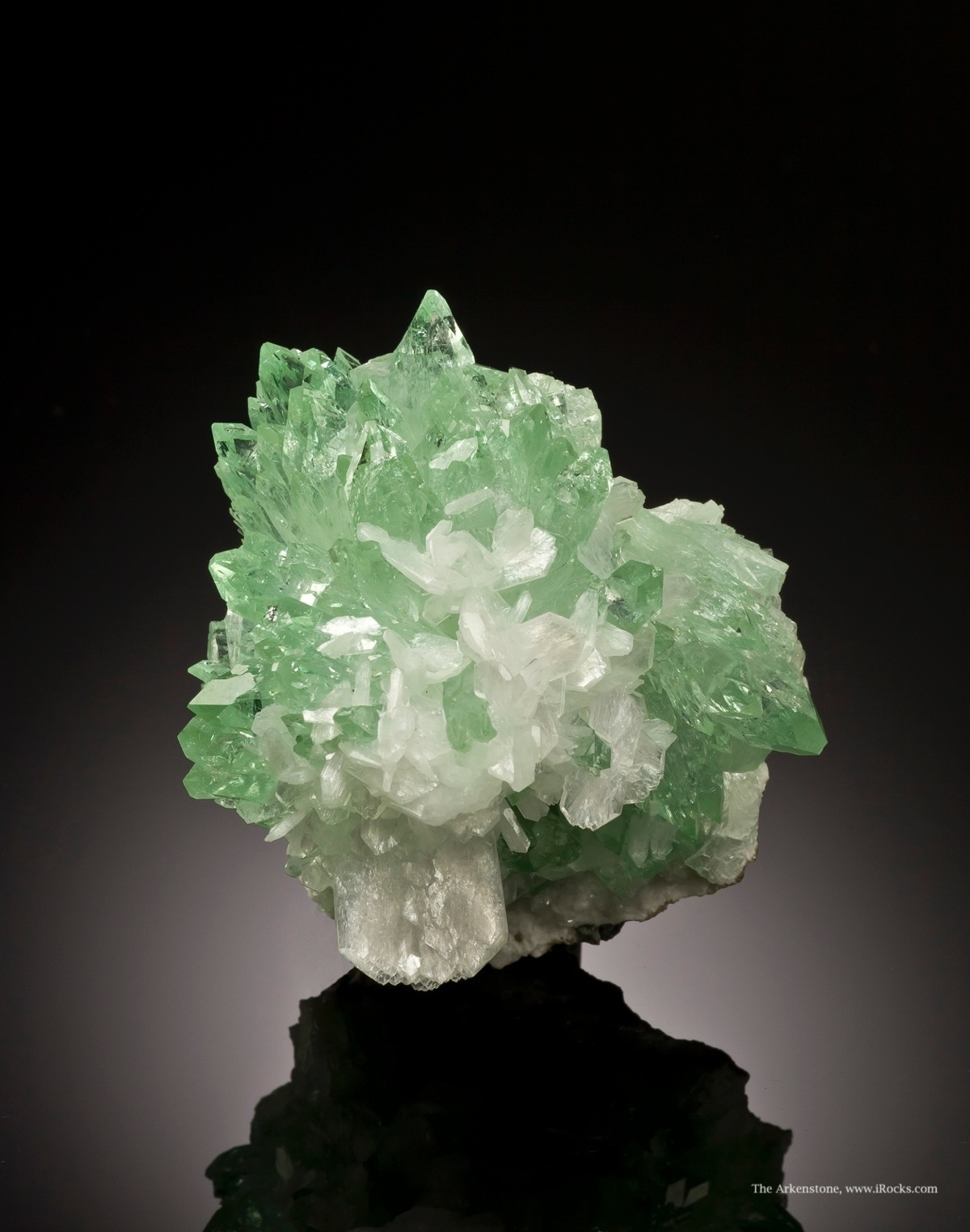 This particular style apophyllite combination distinct large crowd