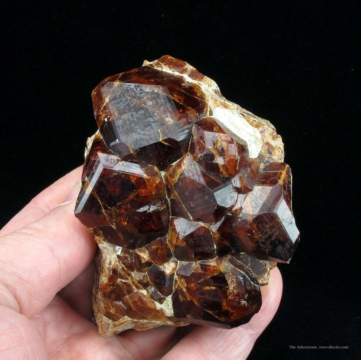 Excellent specimen large dark red Hessonite Garnet crystals emplaced