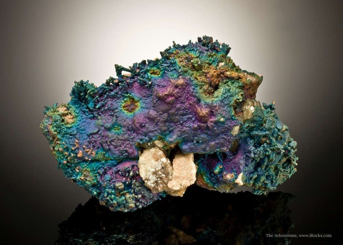 A rich showy example TONS color 2013 The chalcopyrite crystals coated