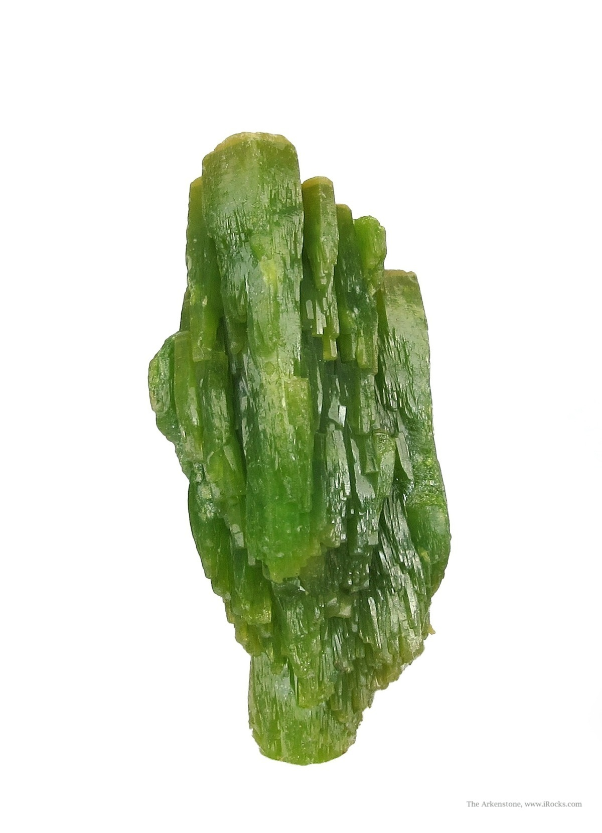 Canada known Pyromorphites green habit mean famous old Society Girl