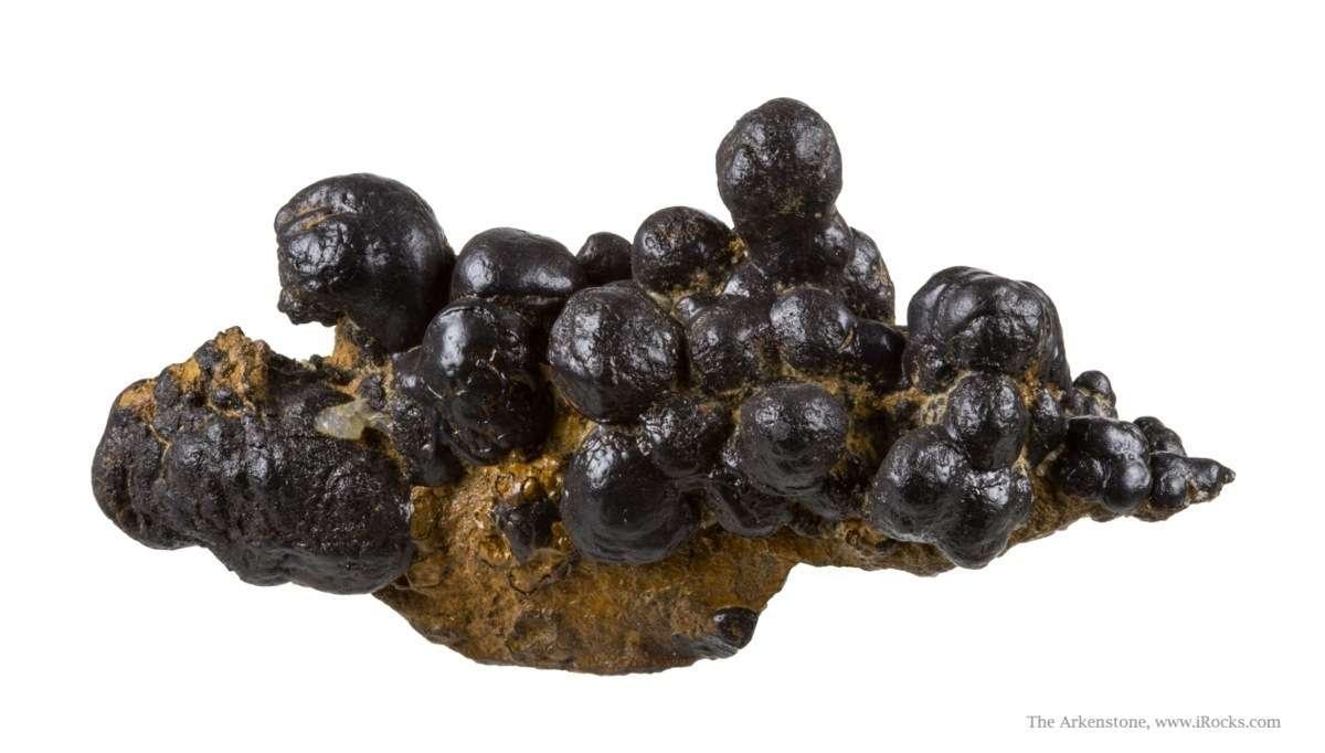 Chesapeake biominerals including Hollandite Todorokite Romanechite