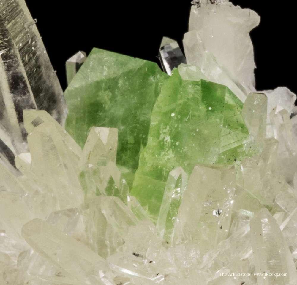 This specimen sparkle The matrix plate studded slender glassy gemmy