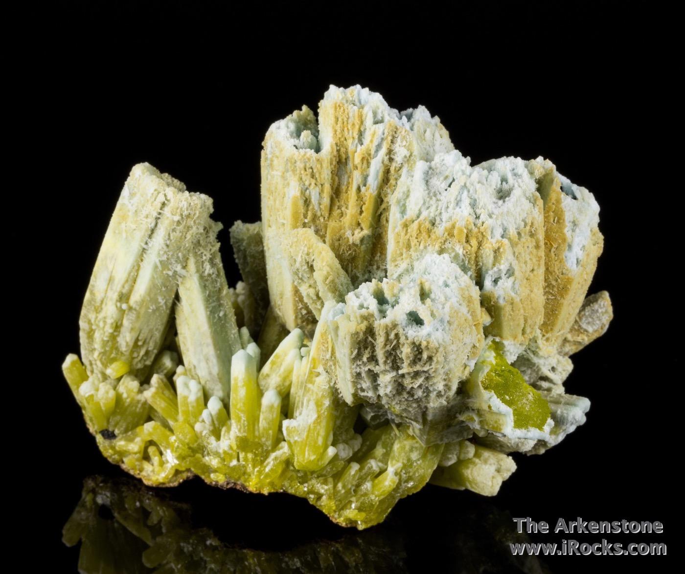 Vertically clustered pedestal like septum ocherous limonite huge fat