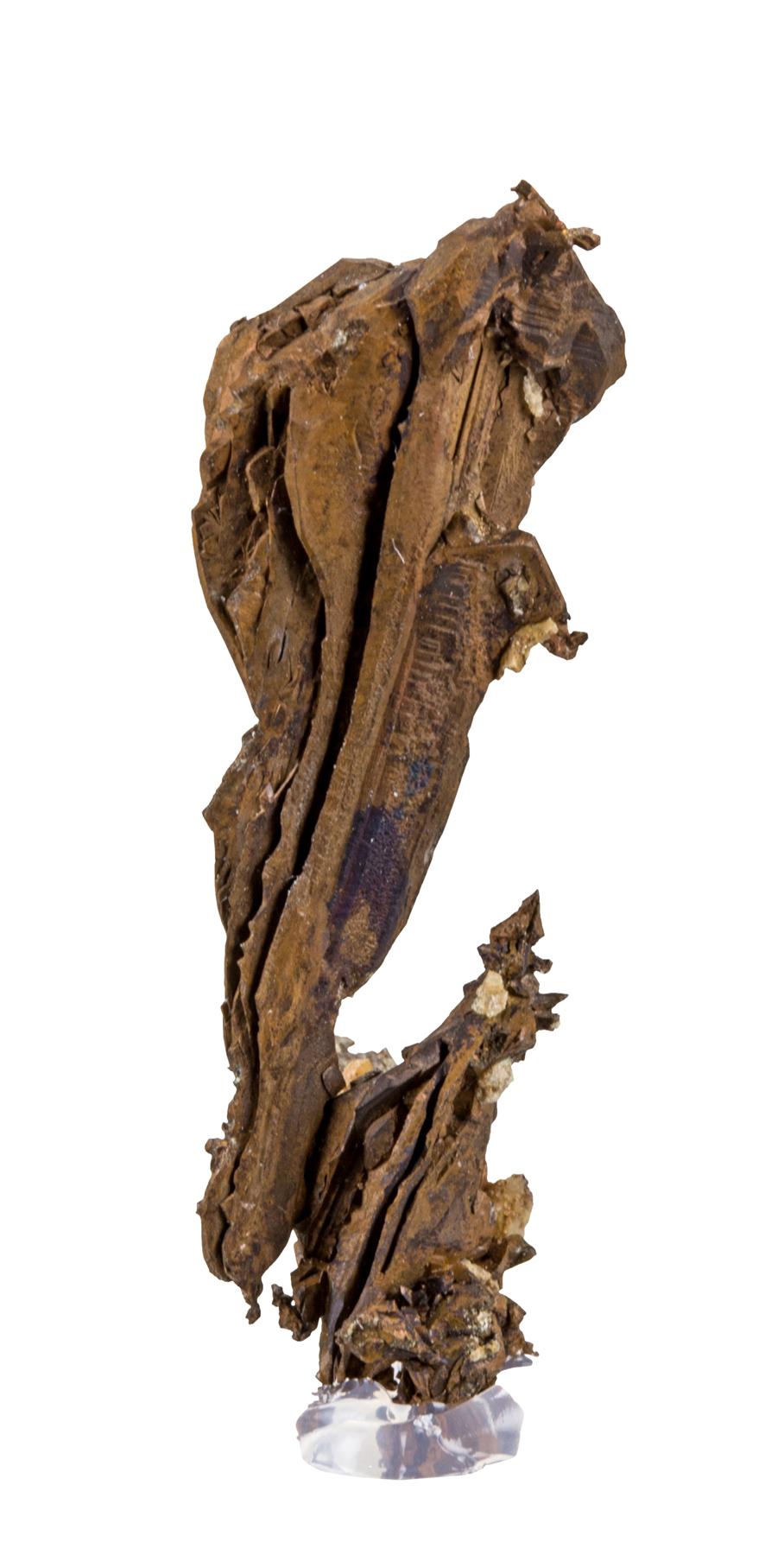 A fine toenail cluster Copper crystals 1740 Bench Ray Mine Arizona