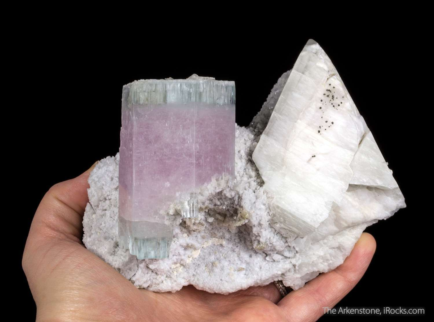 This specimen hosts dramatic doubly terminated crystal measuring 7 x 4