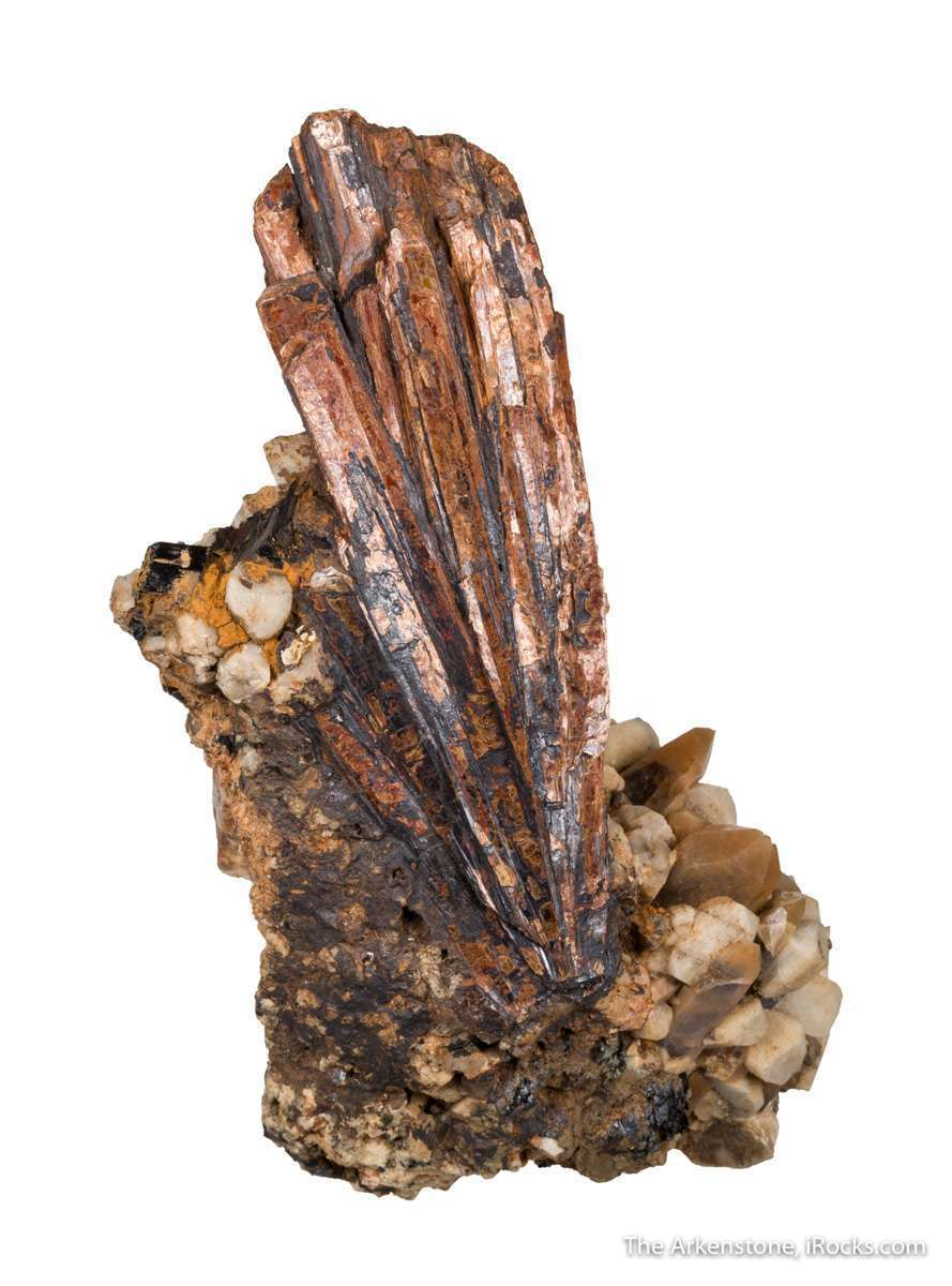 Niobophyllite extremely rare species containing niobium titanium best