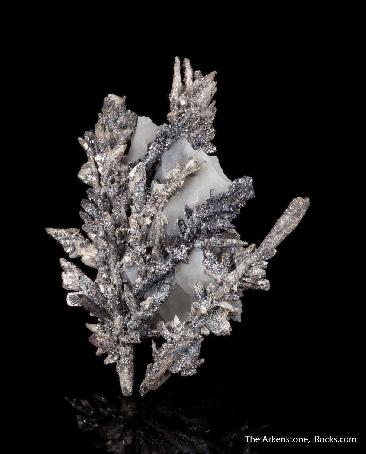 Spectacular dendritic growth natural pedestal contrasting calcite