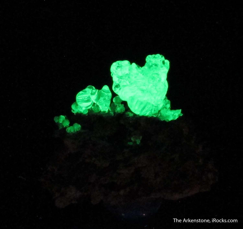 Elegant flowerlike 1 5 cm upright growth gemmy lustrous Hyalite Opal