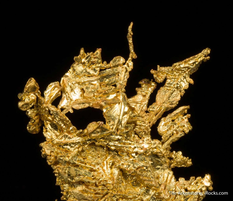 A classic crystallized Eagles Nest gold specimen flattened elongated