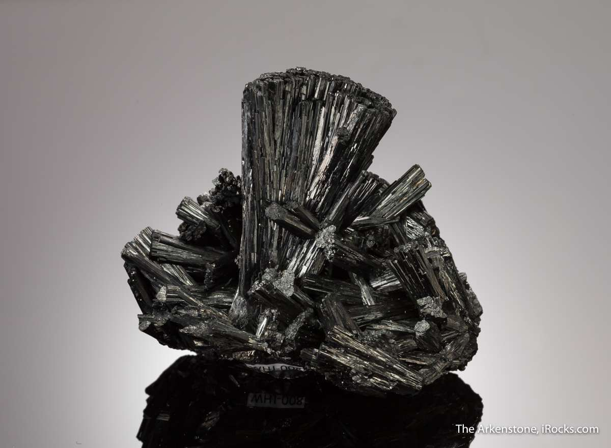 This rarities mineral world gorgeous example black mineral species