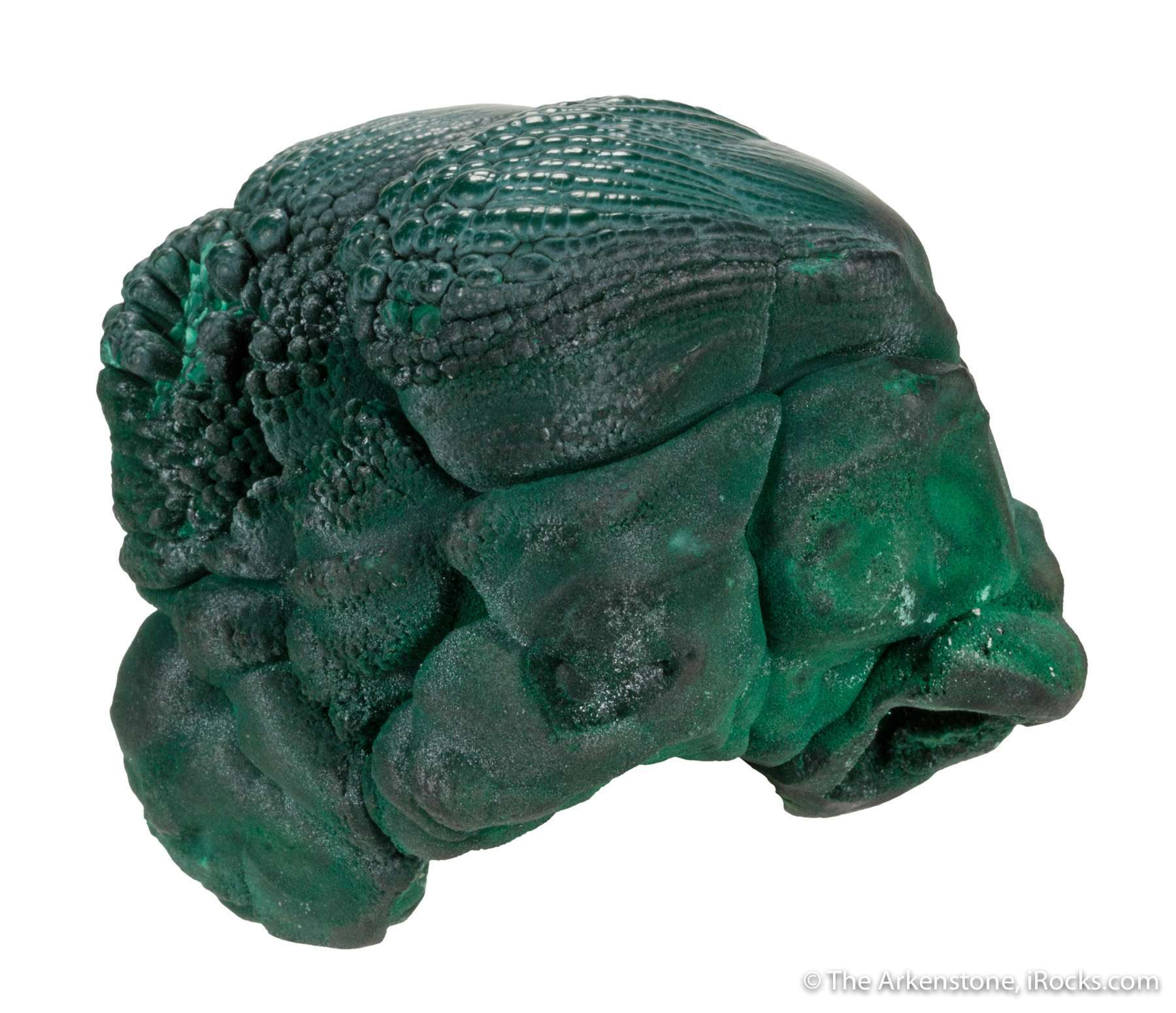 Closely resembling rounded flower buds ready burst bloom malachite