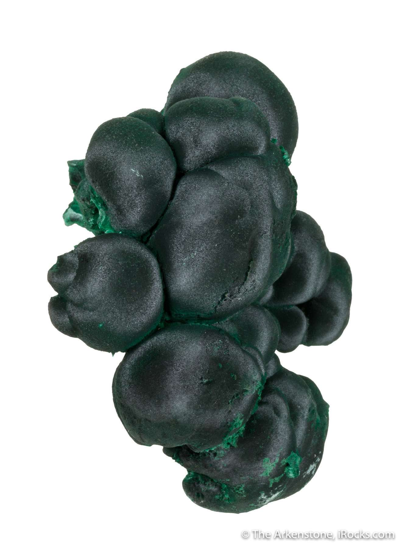Interconnected botyroids satiny dark forest green malachite 3 cm