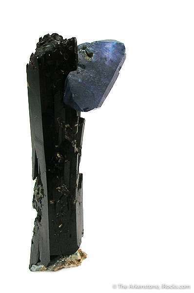 This unusual specimen featuring benny perched neptunite crystal